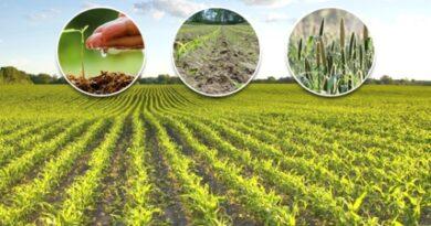 زرعی ترقی اولین ترجیحات میں شامل، ہر ممکن اقدامات کرینگے: وزیر اعظم