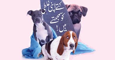 کتے اپنی غلطی کو سمجھتے ہیں !