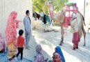 اونٹ جو بلوچستان کے دیہات میں علم کی روشنی پھیلا رہا ہے