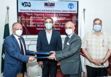 ویٹرنری یونیورسٹی کا پاکستان ڈیری ایسوسی ایشن کے ساتھ مویشی پال حضرات اور انویسٹرز کی عملی تربیت کیلئے مفاہمتی یادداشت پر دستخط