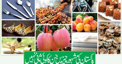 پاکستان کی مشہور چیزیں جن کا کوئی ثانی نہیں