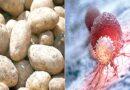 سبزیاں اور کافی کووڈ کا خطرہ کم کرنے میں مددگار :تحقیق