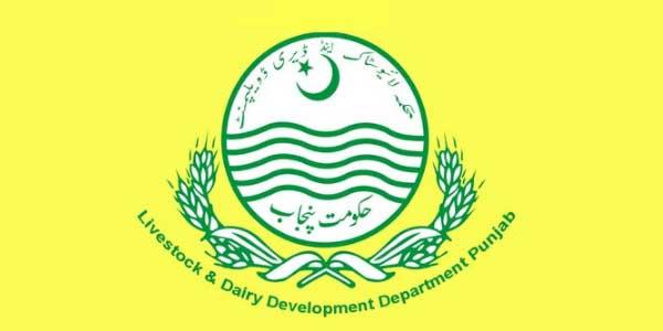 محکمہ لائیوسٹاک پنجاب، ترقی کے شاندار 3 سال