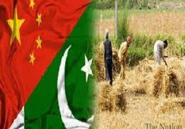 جانور پالنے، وسیع زرعی منصوبوں سے پاکستان کوبے پناہ فائدہ ہوگا ،چینی اسکالر